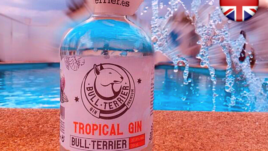 Tropical Gin Bull Terrier ( English )