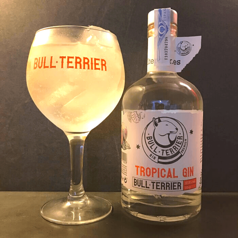 Spanish Style Gin Tonic con ginebra Tropical Bull Terrier.